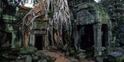 Ta Prohm, Angkor, Cambodia, 2004