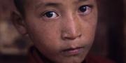 Young novice at Tikse monastery, Ladakh, India, 2006