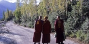 Monks coming back to Sumur monastery, Ladakh, India, 2006